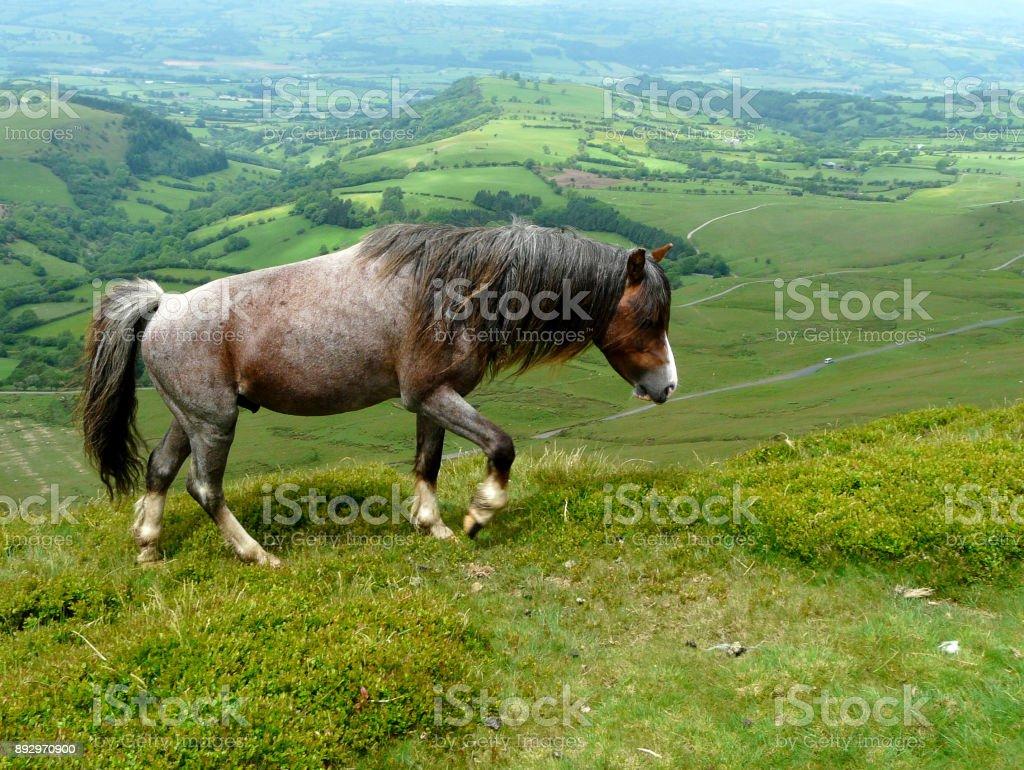 brecon beacons stock photo