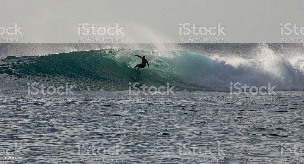 breezin stock photo