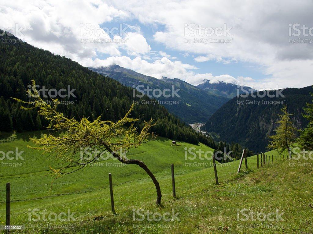 Brenner-Pass – Foto