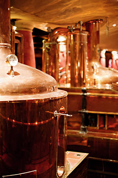 brewery - brewery tanks stock pictures, royalty-free photos & images