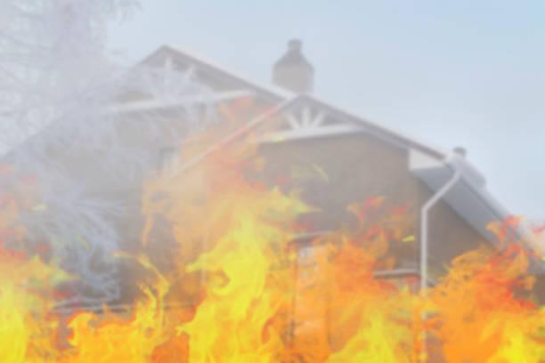 het huis van de baksteen en berkentakken in de winter. uitzicht vanaf voren. brand. - ornithologie stockfoto's en -beelden