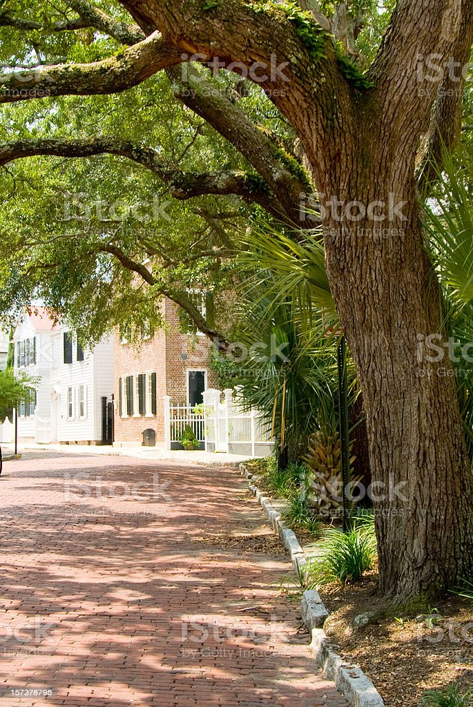 Brick Street In Charleston royalty-free stock photo