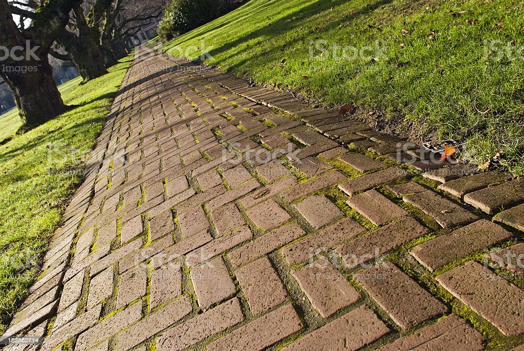 Brick walkway with trees on university campus stock photo