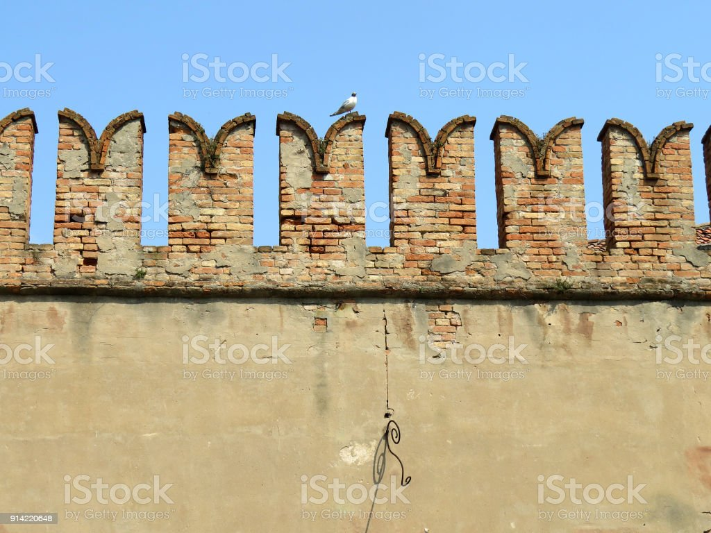 Brick wall in Venice, Italy with seagull stock photo