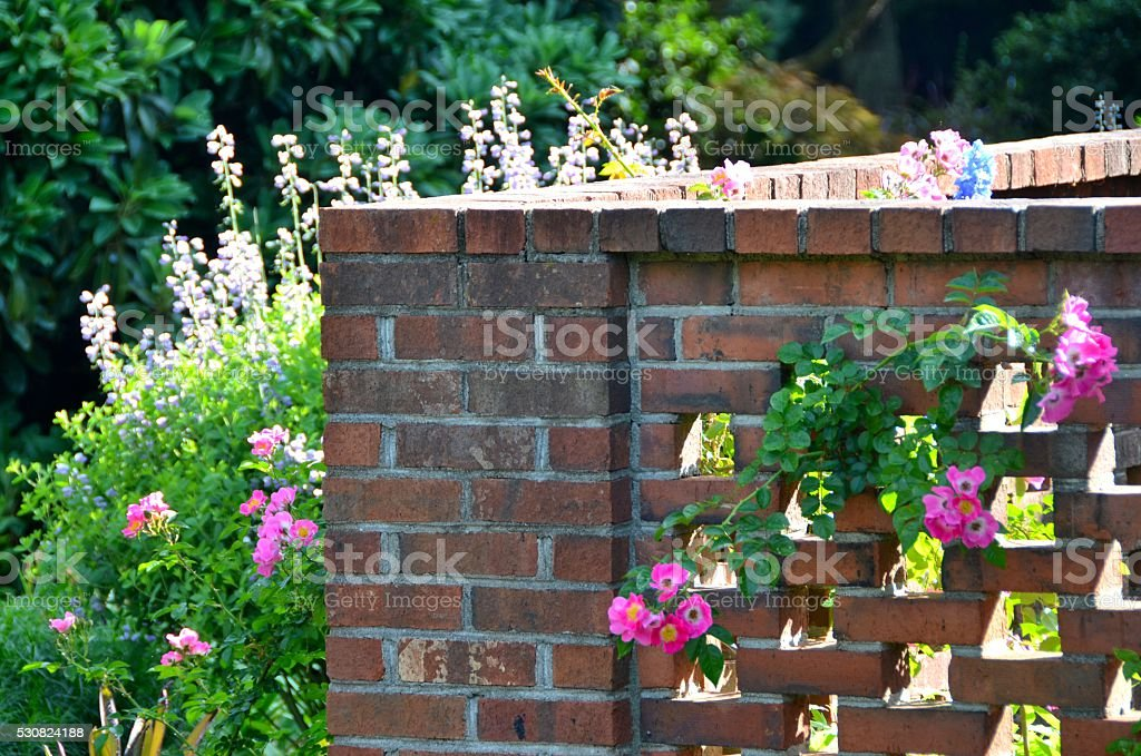 Brick Wall With Flowers Stock Photo More Pictures Of Brick Wall
