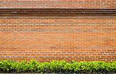 Brick Wall with green garden