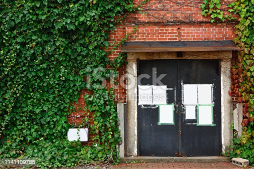 Close-up of brick warehouse and black iron door with ivy.