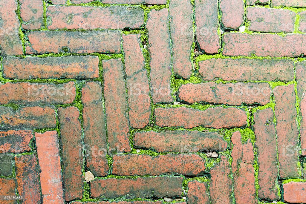 Bricks and moss photo libre de droits