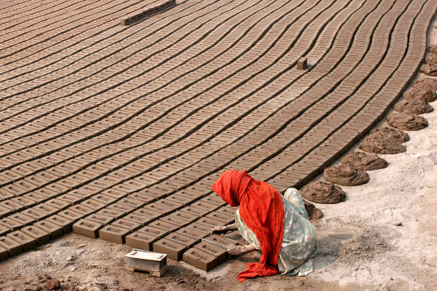 Bricks made of mud and dried Bricks made of mud and dried. lahore pakistan stock pictures, royalty-free photos & images