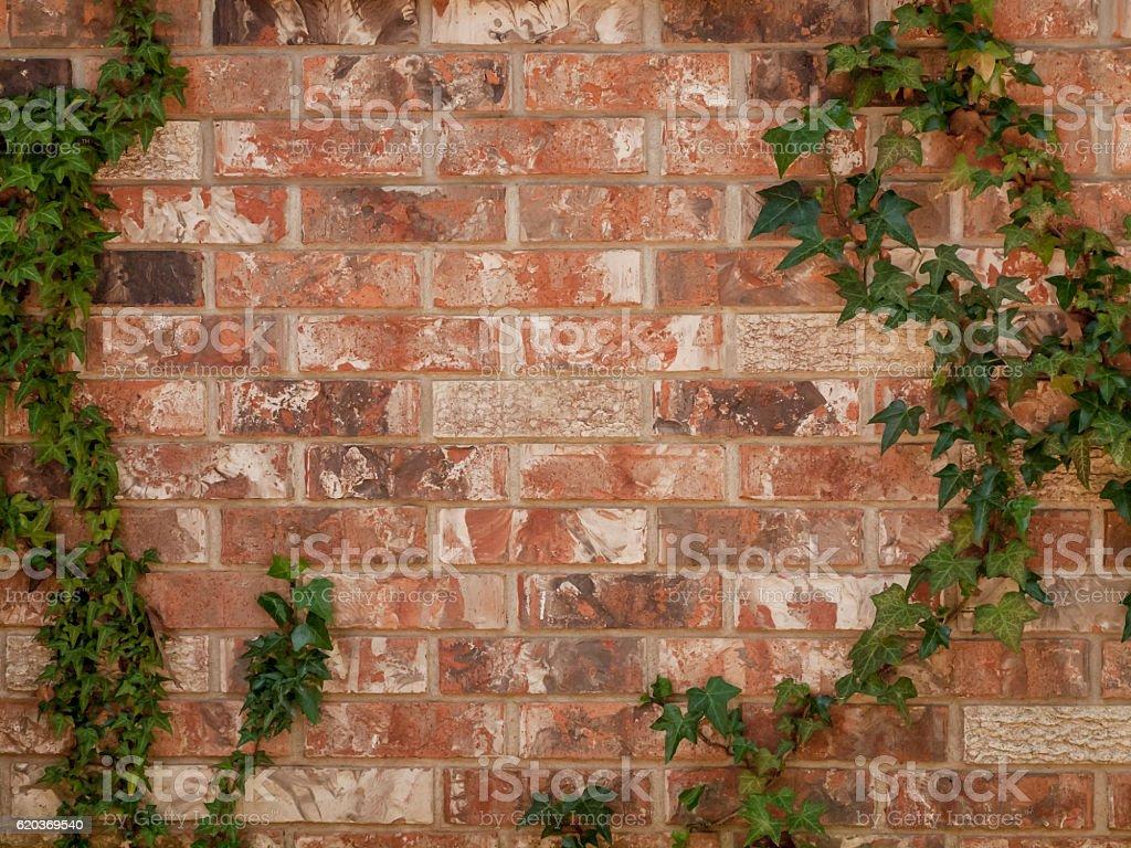 Brickwall  zbiór zdjęć royalty-free
