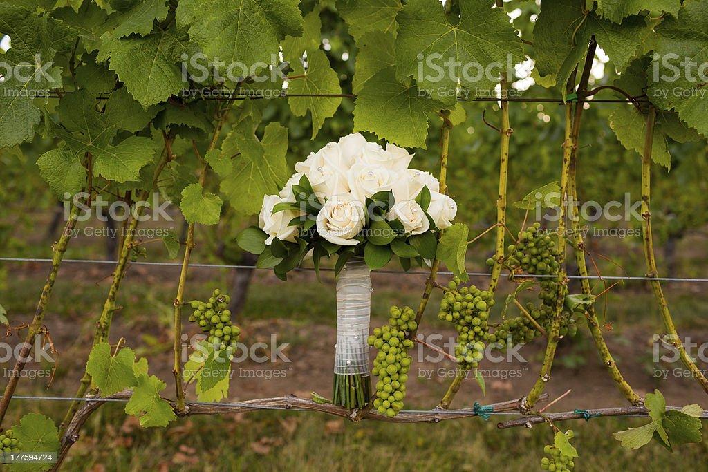 Bridal Bouquet in Vineyard stock photo