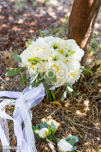 istock bridal bouquet of white peonies 481142428