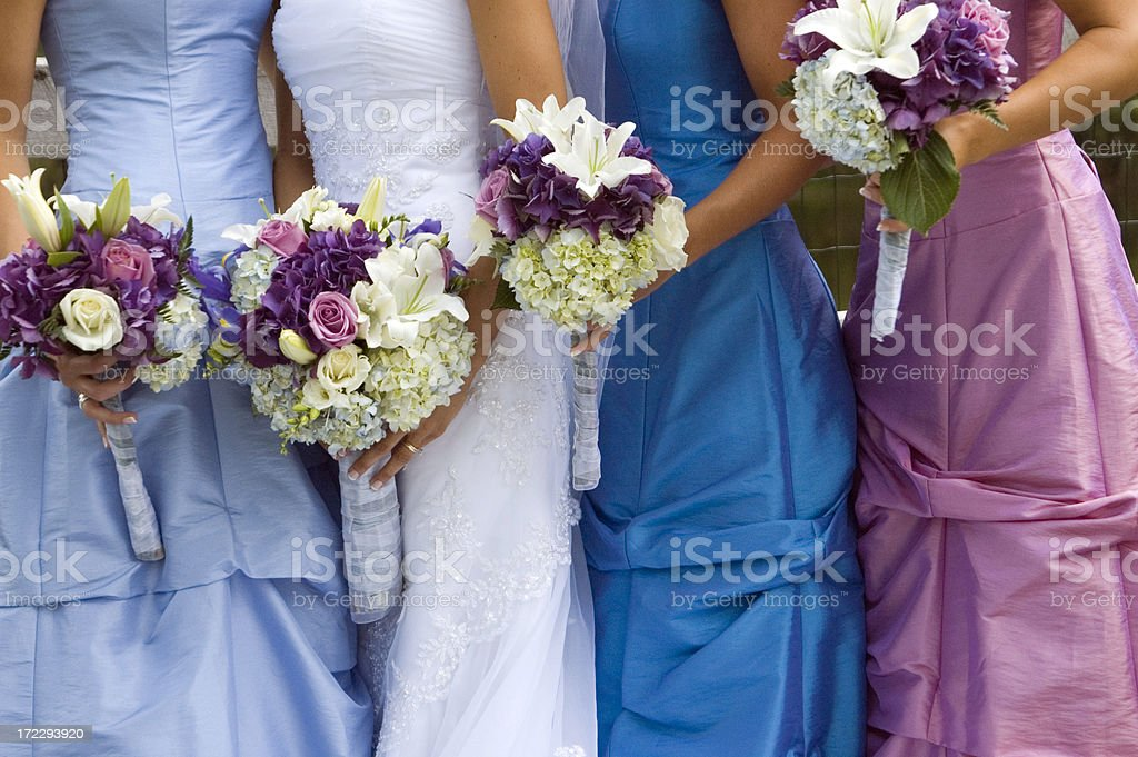 Bridal Party - 2 stock photo