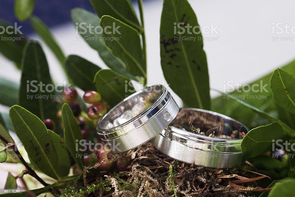 bridal rings royalty-free stock photo