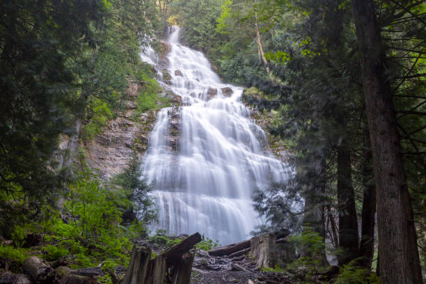 bridal veil falls provincial park waterfall - provincial park stock photos and pictures
