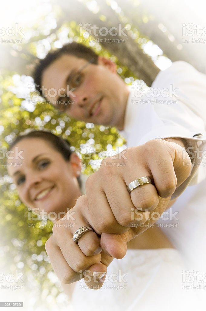 Bride & Groom royalty-free stock photo