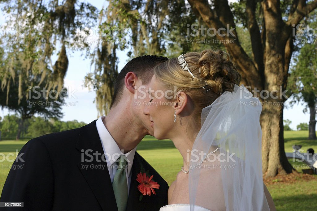 Bride and Groom 8 royalty-free stock photo