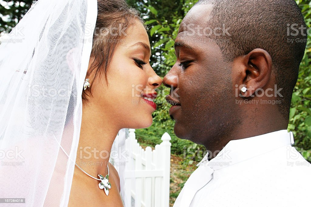 Bride and Groom About to Kiss Each Other royalty-free stock photo