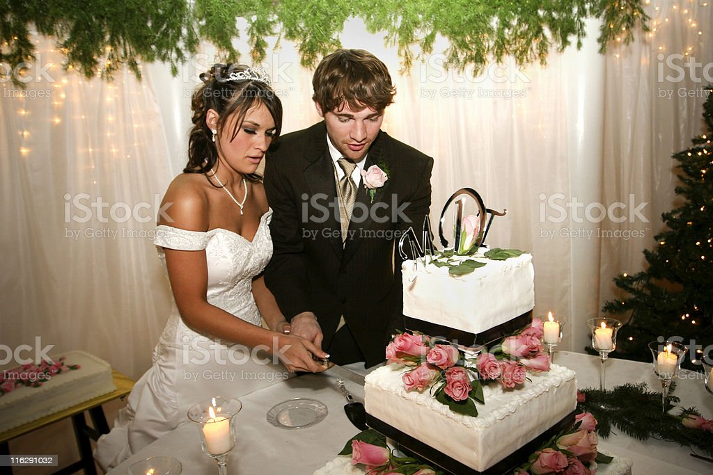 Bride and Groom Couple royalty-free stock photo