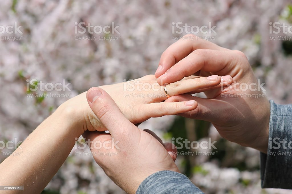 Bride and groom exchanging wedding rings Groom gives an engagement ring to her bride. Wedding and honeymoon concept. wedding day. focus on hand and ring. Blossoming bushes on background. outdoors. Adult Stock Photo