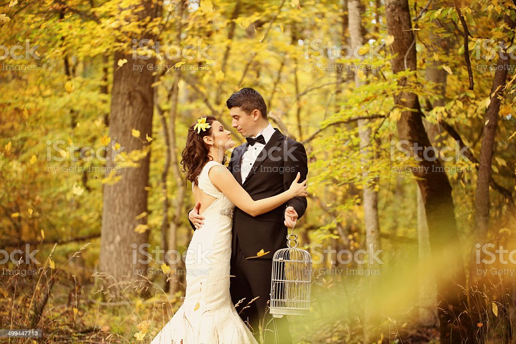 Bride and groom in forest with a bird cage hands royalty-free stock photo