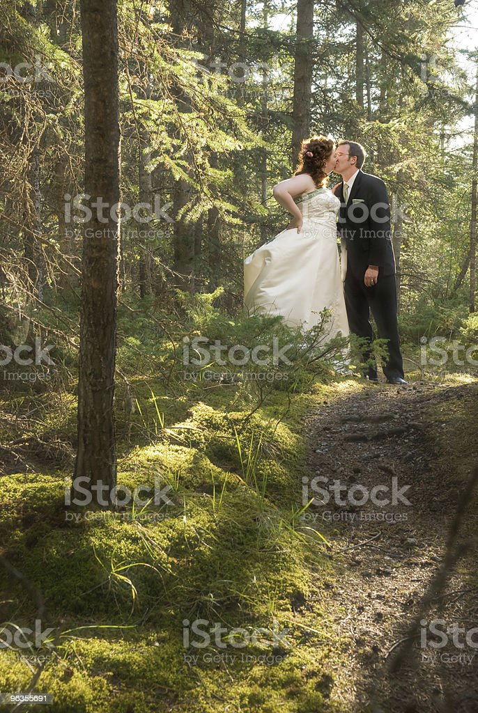 Bride and Groom in Forest with Soft Focus royalty-free stock photo