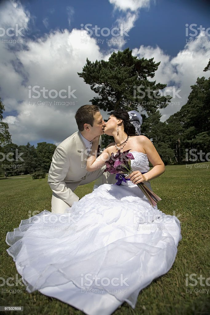 Bride and groom in the park kising royalty-free stock photo
