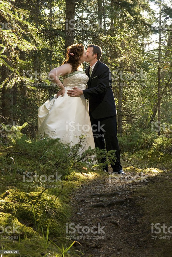 Bride and Groom Kissing in Forest royalty-free stock photo