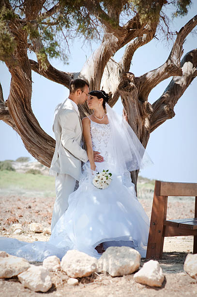 Bride and groom kissing under the old tree stock photo