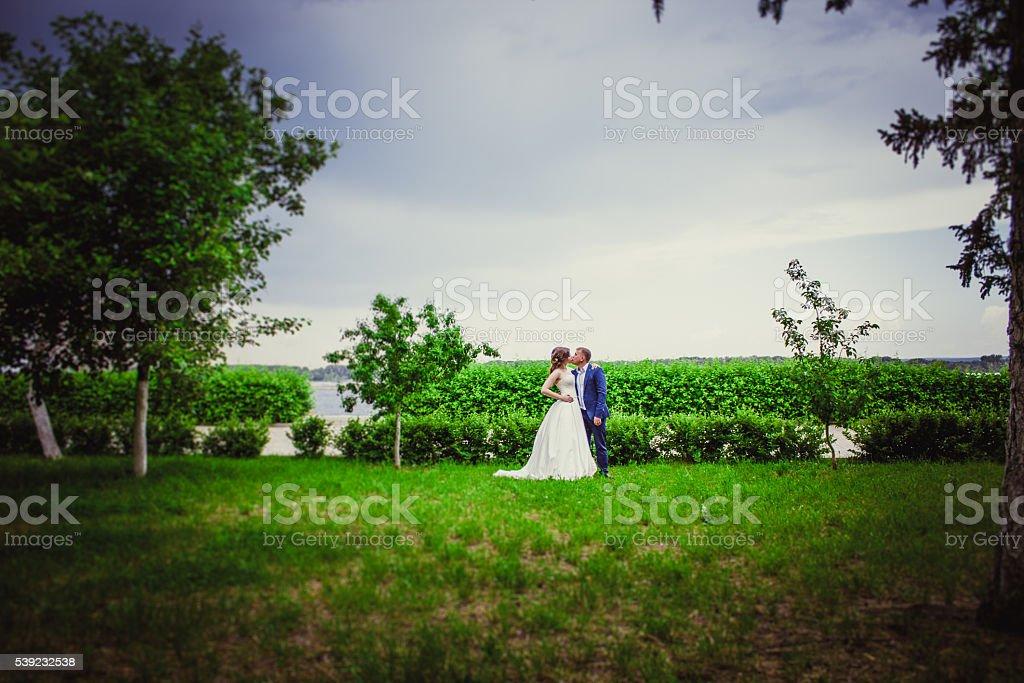 Novia y el novio  foto de stock libre de derechos