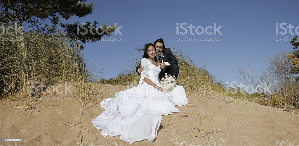 Bride and groom posing royalty-free stock photo