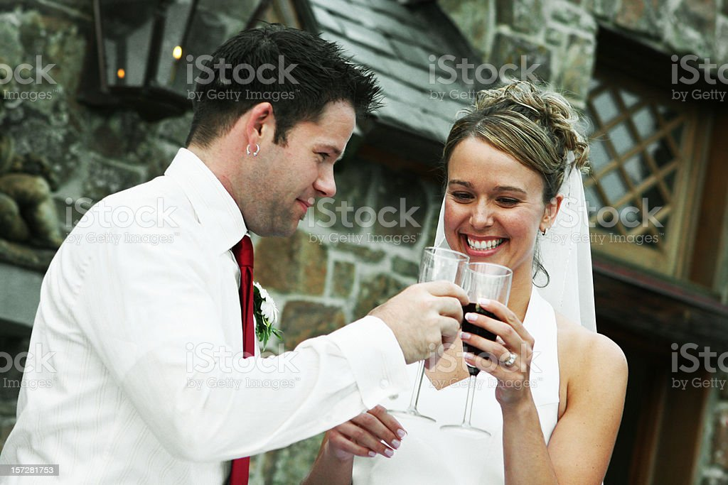 Bride and Groom Toasting royalty-free stock photo