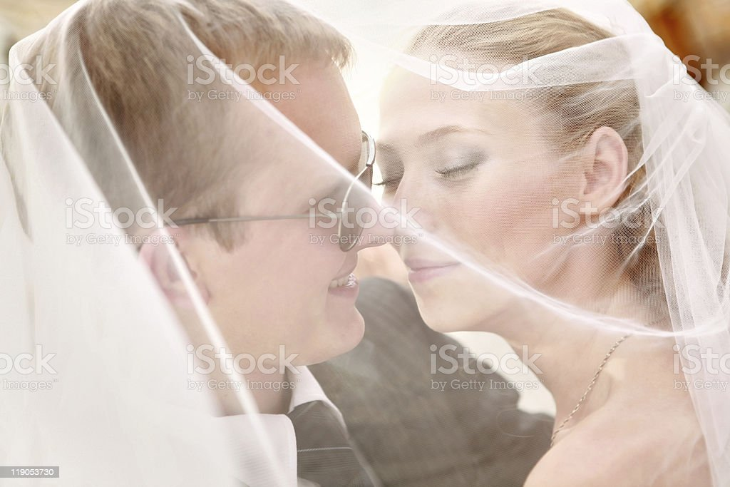 Bride and Groom Under Veil royalty-free stock photo