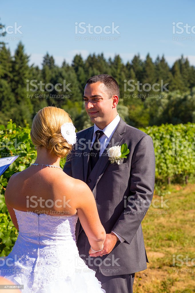 Bride and Groom Vows Ceremony royalty-free stock photo