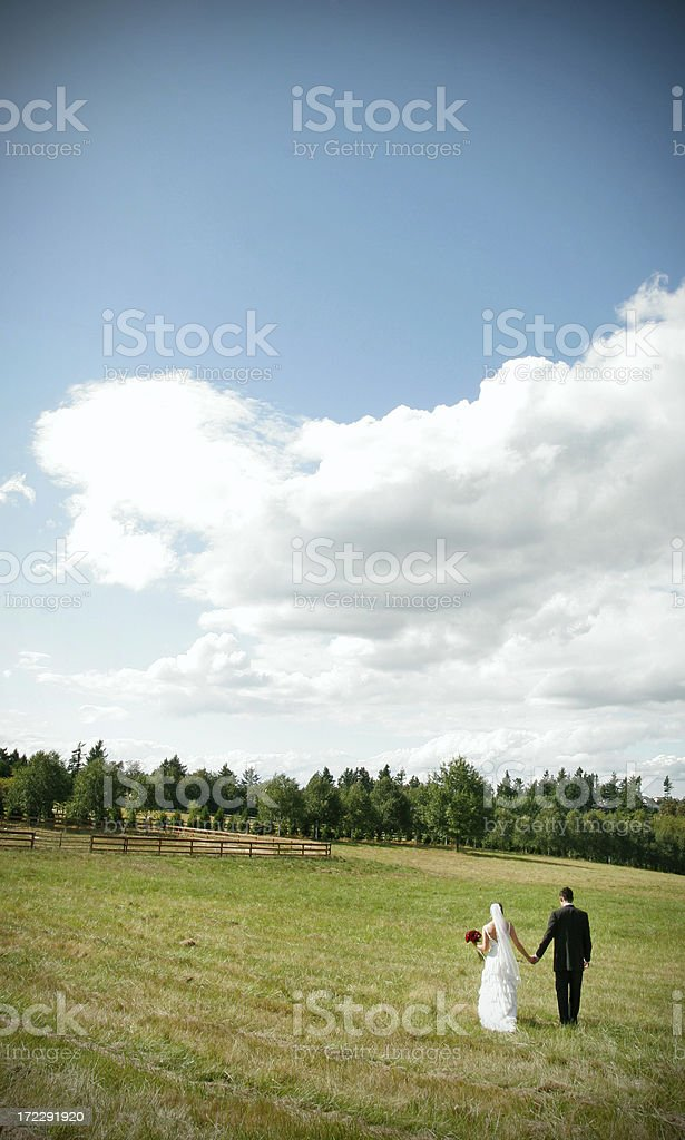 Bride and Groom Walking In Meadow with Copy Space royalty-free stock photo