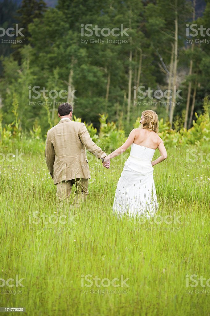 Bride and Groom Walking in Mountains royalty-free stock photo