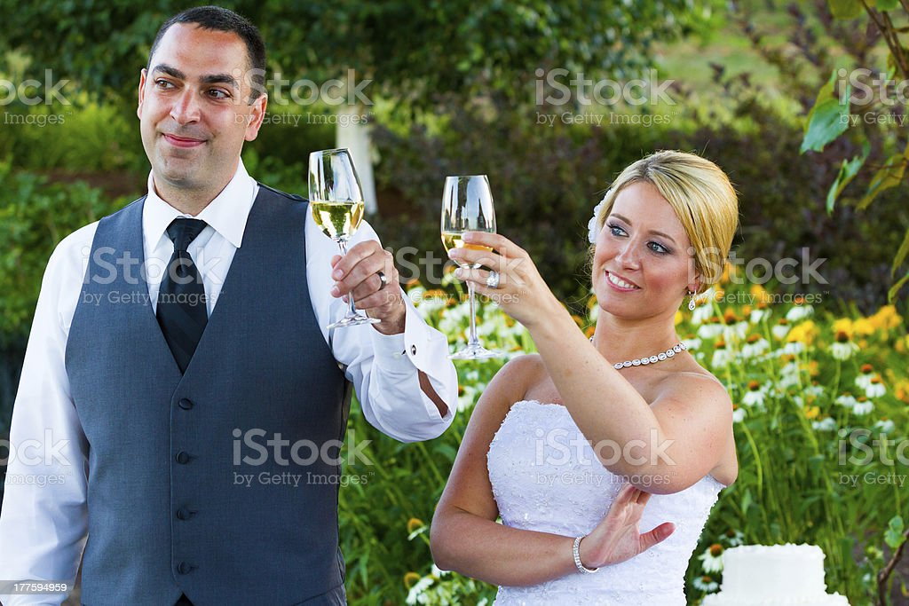 Bride and Groom Wedding Toasts royalty-free stock photo