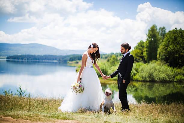 braut und bräutigam hochzeit mit hund - hipster braut stock-fotos und bilder