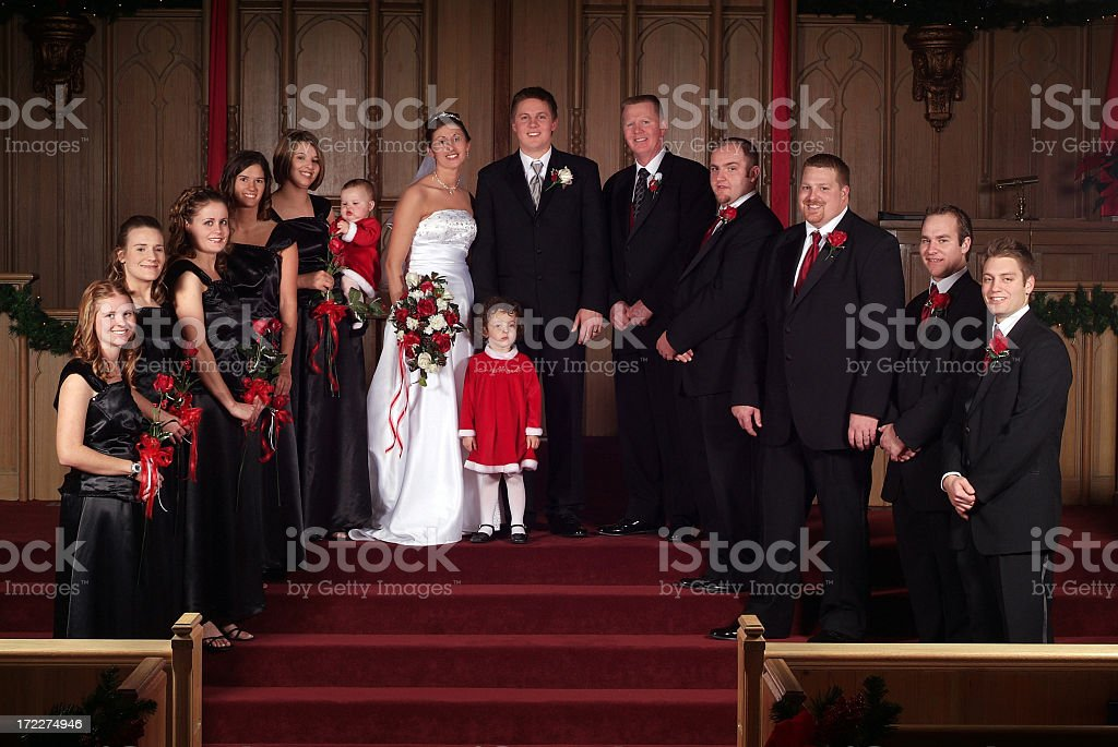 Bride and Groom with their Bridesmaids and Groomsmen royalty-free stock photo