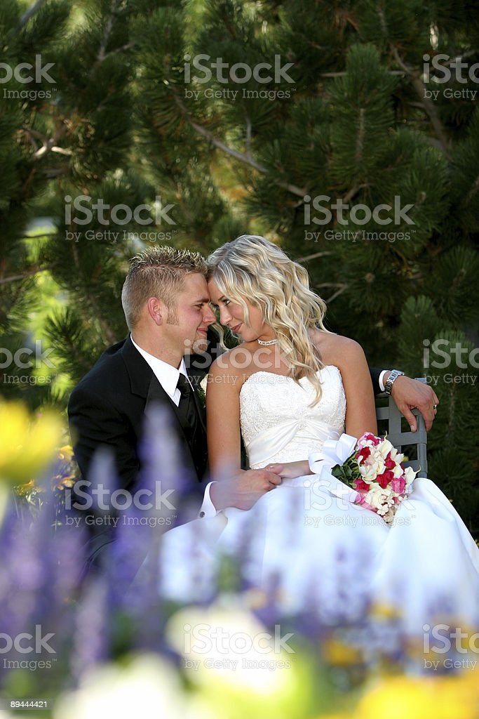 bride and groom_9 royalty-free stock photo