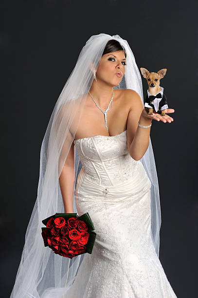 Bride and her doggy groom picture id183252554?b=1&k=6&m=183252554&s=612x612&w=0&h=rbr2bovexzp tuvvbqotbidswlr8ljtmhzfrs1tdto8=