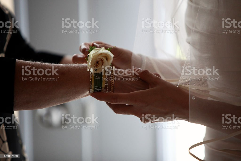 Bride and Mother Hands on wedding day royalty-free stock photo