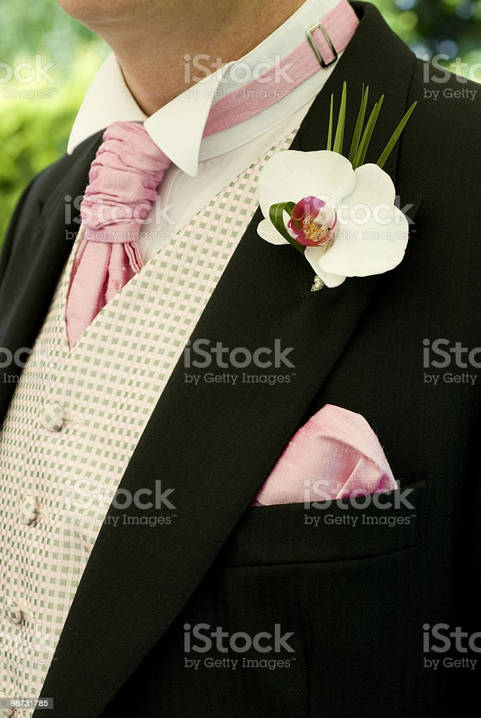 Bride Groom wearing a Morning Suit royalty-free stock photo