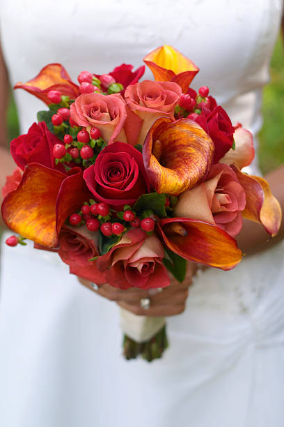 Bride holding bouquet. stock photo