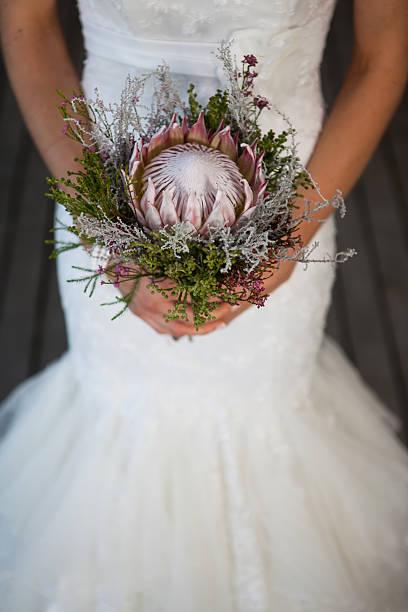 braut hält protea bouquet - protea strauß stock-fotos und bilder