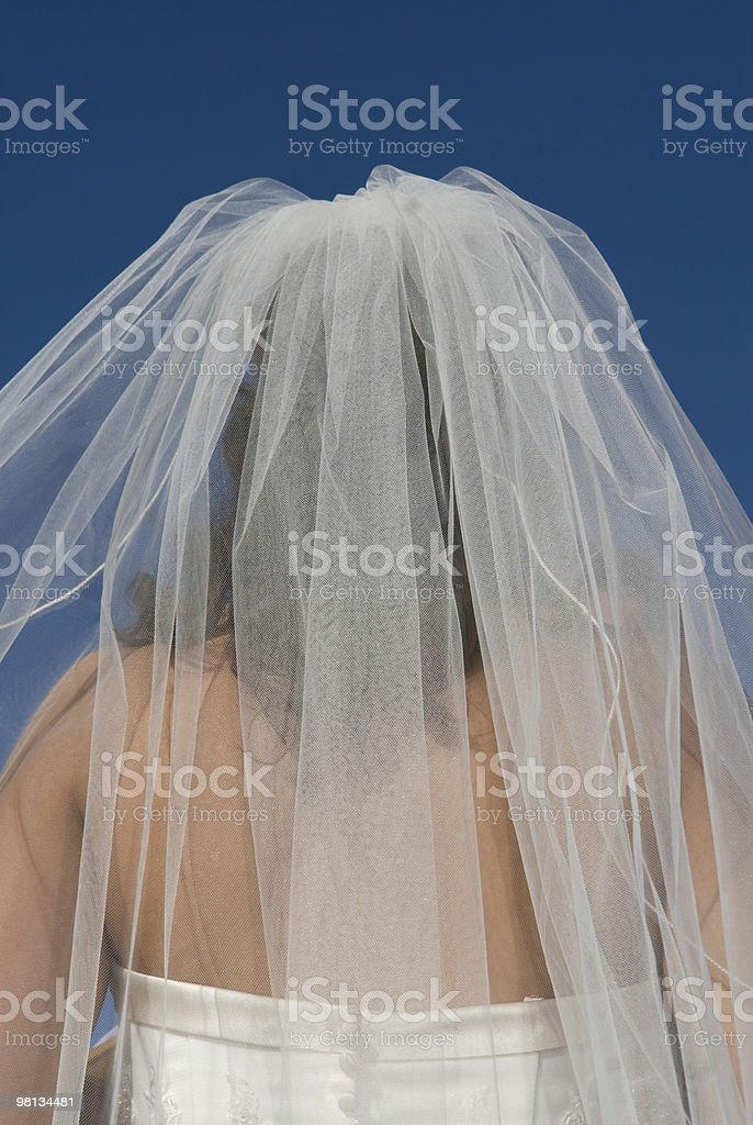 Bride in her gown royalty-free stock photo