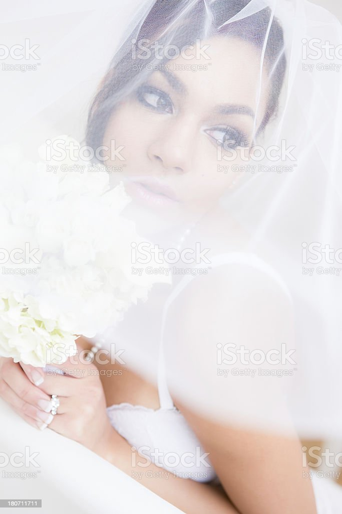 Bride in lingerie under veil royalty-free stock photo