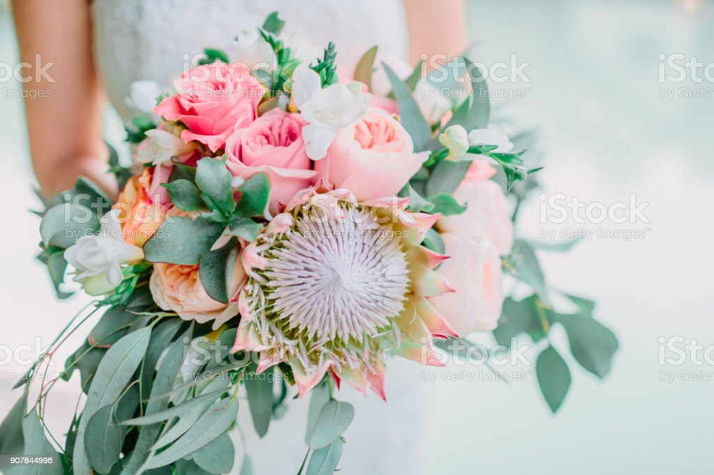 Bride in white dress and hold a wedding pink bouquet with proteus. Wedding day stock photo