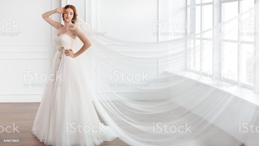 Vestido De Novia En Novia Blanco Con Velo Largo Foto De Stock Y Más Banco De Imágenes De 20 A 29 Años