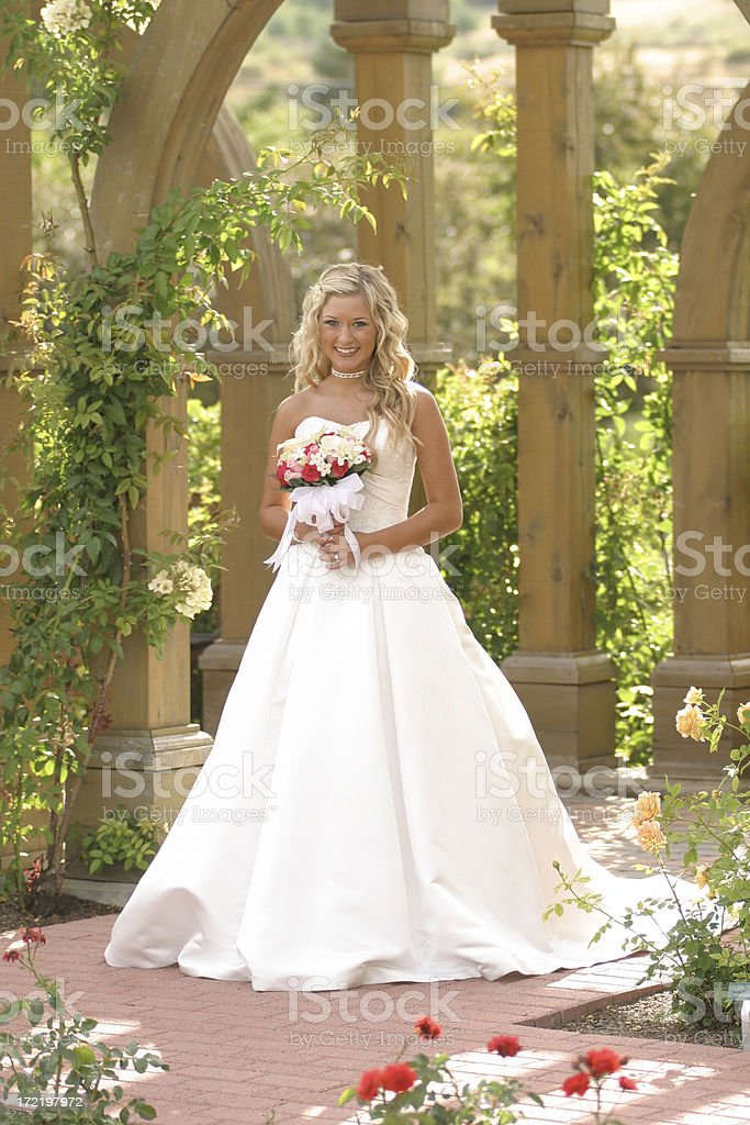 Bride Series royalty-free stock photo
